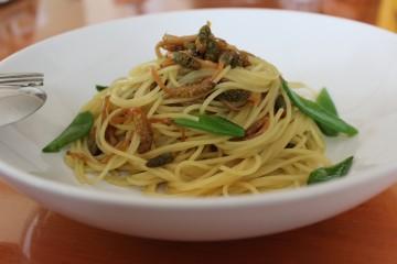 ツクシのスパゲッティ